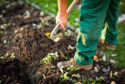 Dienstleistung Gartenarbeit - Kirsch Green